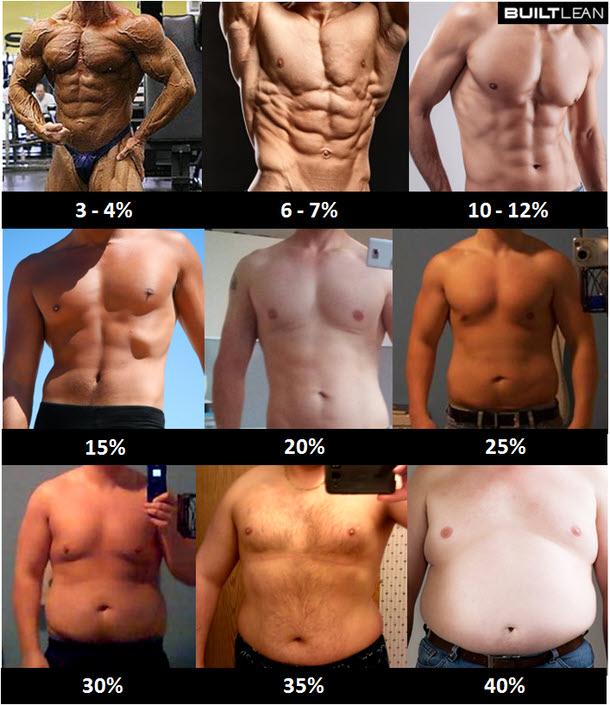 Körperfett-Bilder-Männer